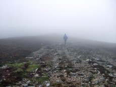 Disappearing in to the Mist